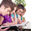 Group of students  studying - Stock Photo
