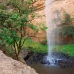 cascade du voile de mariée — Photo