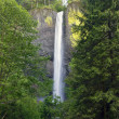 Latourell Falls Oregon - Photo