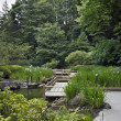 Zig Zag Bridge at Japanese Garden — Stock Photo