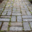 Stock Photo: Brick Pavers Garden Path
