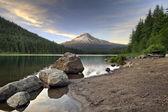 Mount Hood at Trillium Lake 3 — Stock Photo