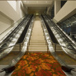 Stock Photo: Convention Center Stairs and Escalators