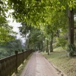 Walking Trail at Fort Canning Park - Stock Photo