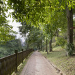 Stock Photo: Walking Trail at Fort Canning Park