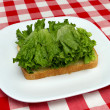 Lettuce and bread - making a blt — Stock Photo #3588955
