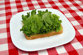 Lettuce and bread - making a blt — Stock Photo