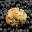 Royalty-Free Stock Photo: Blueberry muffin
