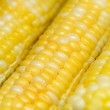 Ears of corn - Stock Photo