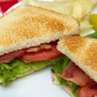 Blt closeup - Stock Photo