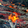 Fire closeups - Foto Stock