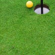 Golf ball on the green grass — Stockfoto