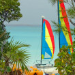 Catamaran sailboat on a beach - Stockfoto