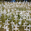 White crosses on a hillside — Foto de Stock