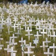Stock Photo: White crosses on hillside