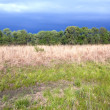 Tallgrass prairie remnant and dramatic sky in spring — 图库照片