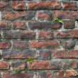 Old bricks wall - Stock Photo