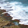 Colorful Reef shore with water — Stock Photo