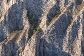 Cliff texture — Stock Photo
