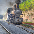 Steam Train — Stock Photo #2718450