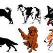 Dogs collection vector eps10 — ストックベクタ