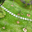 Stock Photo: Stepping stones through garden
