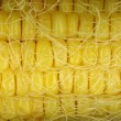 Closeup of corn cop — Stock Photo #2699062