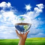 Protect earth — Stock Photo