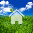 Eco Green home — Stock Photo