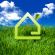 Stock Photo: Eco Green home