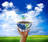 Protect earth — Stock Photo