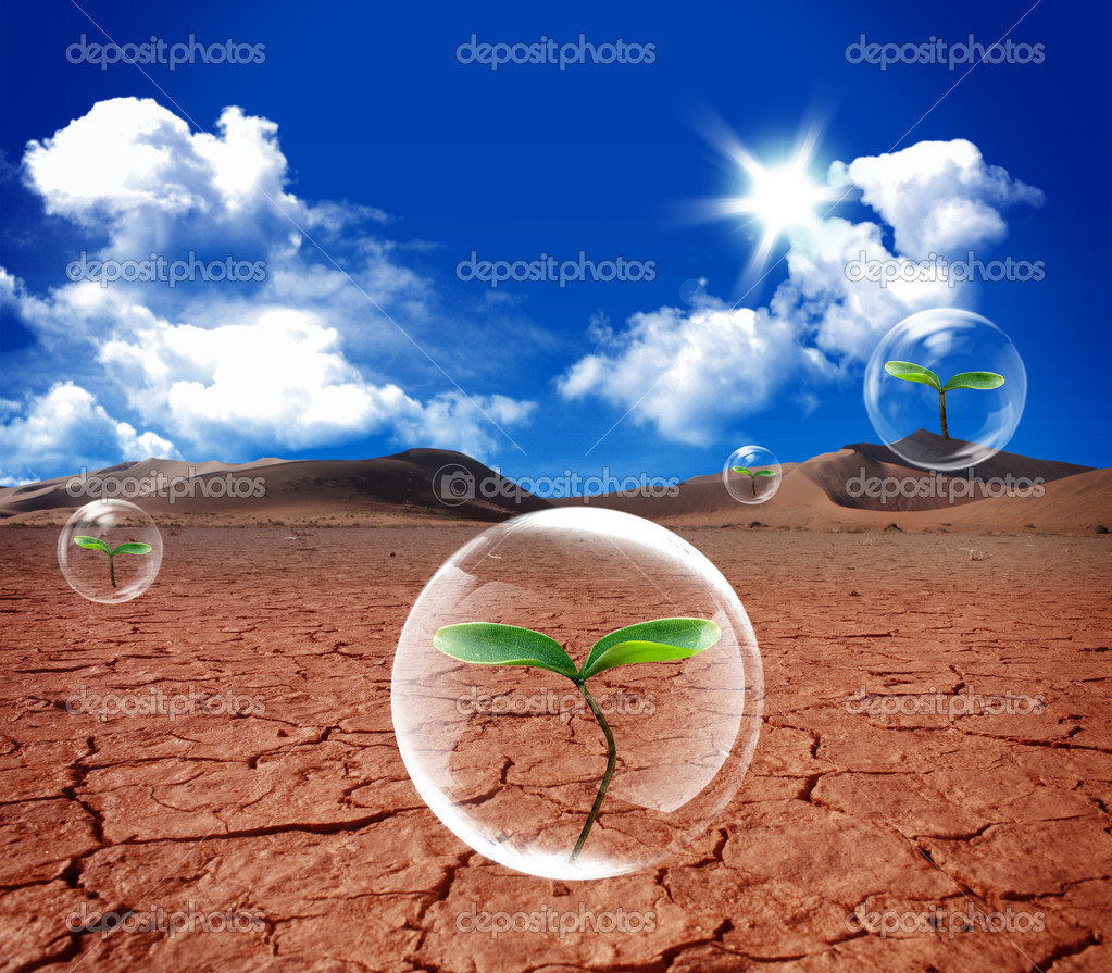 New life green grass in the water bubble in arid soil — Stock Photo #2901229