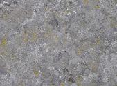Granite stone with moss — Stock Photo