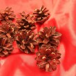 Pine cones on a red satiny background — Stock Photo
