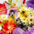 Stock Photo: Beautiful bunch of flowers