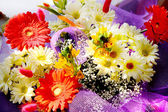 Beautiful bunch of flowers — Stock Photo