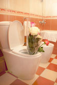 The roses costs in a toilet — Stock Photo