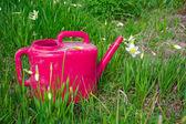 Regador vermelho em uma grama verde e cores de — Foto Stock