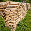 Stock Photo: Structure of dry birch fire wood
