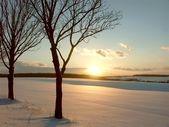 外地日落 — 图库照片