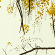 Stock Photo: Golden Shower Tree on Handmade Paper
