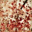 Stock Photo: Red blossom background