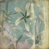 Grunge Pastel flower background — Stock Photo