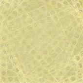 Holepunch 光汚れた背景 — ストック写真