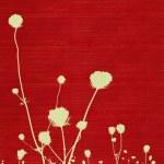 Длинных стеблях луг Цветок силуэт — Стоковое фото