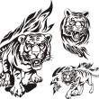 Flaming big cats. — Imagen vectorial