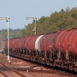 Freight fuel train — Stock Photo #2994632