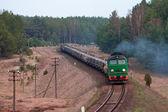 Treno diesel merci — Foto Stock