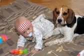 Baby plays with a dog — Stock Photo