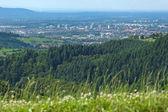 Freiburg — Foto de Stock